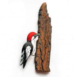 Ptaszek na korze DZIĘCIOŁ