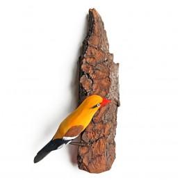 Ptaszek na korze WILGA