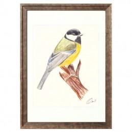 Obrazek z ptaszkiem SIKORKA